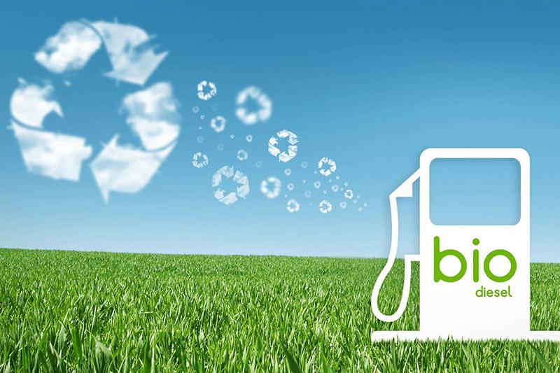 Требования к биодизелю