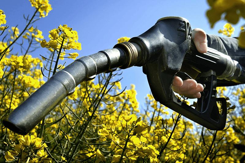 Требования к биоэтанолу